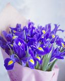 A bouquet of irises. In a vase Royalty Free Stock Photography