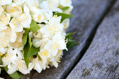 Bouquet of jasmine flowers Royalty Free Stock Photos