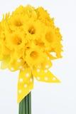 Bouquet jaune de jonquille avec l'arc Images stock