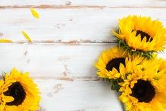 Bouquet jaune de tournesol sur le fond rustique blanc image stock