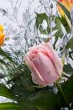 Bouquet jaune et rose de fleurs de roses Images libres de droits