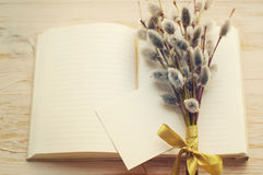 Bouquet kidney willow and open blank notebook and an empty white card for the text Royalty Free Stock Photos