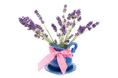 Bouquet Lavender Stock Photography