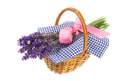 Bouquet Lavender in basket. Purple bouquet Lavender in basket on white background Royalty Free Stock Images