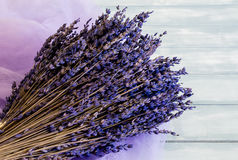 Bouquet of lavender flowers Stock Photos