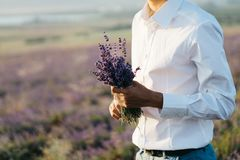 Bouquet of lavender in the hands of a man in white shirt. wedding concept royalty free stock image