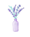 Bouquet with Lavender and herbs Royalty Free Stock Photos