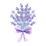 Bouquet with Lavender and herbs Royalty Free Stock Image