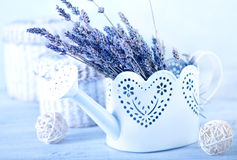 Bouquet of lavender Royalty Free Stock Images