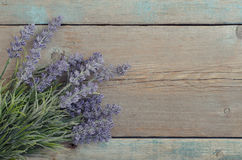 Bouquet lavender Royalty Free Stock Image