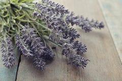 Bouquet lavender Royalty Free Stock Photos