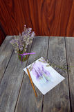 Bouquet of lavender Stock Image