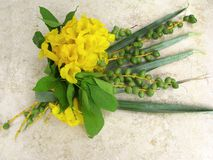 Bouquet from leaves of palm  and acacia on marble Royalty Free Stock Photography