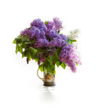 Bouquet of a lilac in a bright jar on light tones. Stock Image
