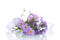 Bouquet of lilac chrysanthemums Royalty Free Stock Photo