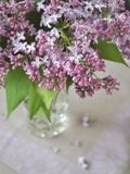 Bouquet of lilac flowers Stock Photography