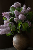 Bouquet of lilac flowers in old round vase Royalty Free Stock Photo