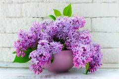 Bouquet of lilac flowers in a lilac vase against the background of a white brick wall royalty free stock image