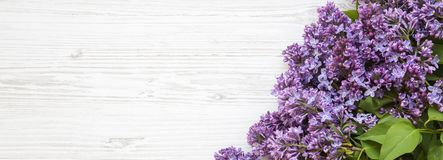 A bouquet of lilac flowers on a white wooden surface, overhead view. Copy space. Top view, flat lay royalty free stock photos