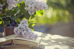 Bouquet of a lilac and old books Stock Photography