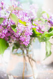 Bouquet of lilac over light background with bokeh Stock Images