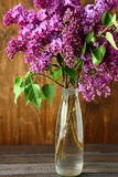 Bouquet of lilac in a vase on the boards Royalty Free Stock Photography
