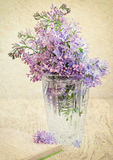 Bouquet of a lilac Stock Photos