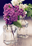 Bouquet of lilac Stock Photo