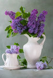 Bouquet of lilacs Stock Images