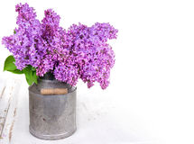 Bouquet of lilacs Royalty Free Stock Photos