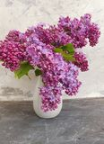 Bouquet of lilacs beautiful a vase on retro concrete vintage background. Bouquet of lilacs in a vase on old concrete vintage background retro beautiful royalty free stock photography