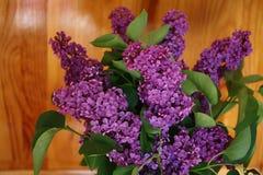 Bouquet lilacs Stock Images