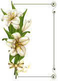 Bouquet with lilies. Wonderful bouquet with lilies and space for your text,  illustration Stock Photography