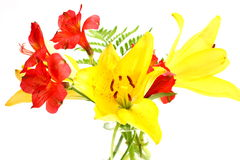 Bouquet of Lilies. Bouquet of assorted lilies in a vase Royalty Free Stock Photo