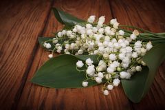 Bouquet of lilies of the valley on a background of wooden Royalty Free Stock Image