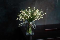 Bouquet of lilies of the valley, dark background stock images