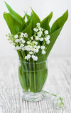 Bouquet lilies of the valley Royalty Free Stock Images