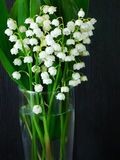 Bouquet of lilies of the valley Stock Image