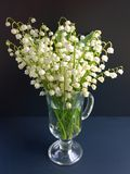 A bouquet of lilies of the valley with green leaves in a vase of glass on a black background Royalty Free Stock Images