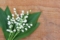 Bouquet of lilies of the valley with water drops on wooden background Royalty Free Stock Images