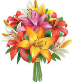 Bouquet of lilies Stock Photos
