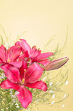 Bouquet of Lily Flowers. Against gold background Royalty Free Stock Image