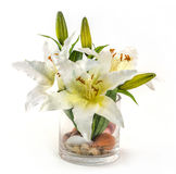 Bouquet of lily in glass vase. On white Royalty Free Stock Images