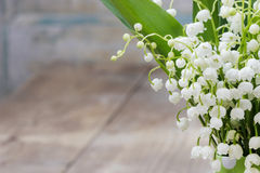 Bouquet of lily of the valley flowers Stock Photo