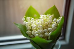 Bouquet of Lily of the valley flowers standing on the windowsill near the window stock images