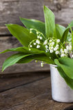 Bouquet lily of the valley flowers Stock Photos