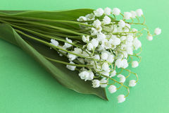 Bouquet Lily of the Valley. On a Green Background Stock Photo
