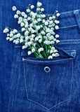 Bouquet of lily of the valley Stock Photography