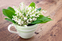 Bouquet of lily of the valley Royalty Free Stock Images