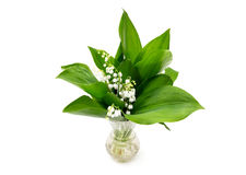 Bouquet of lily of the valley in a vase Stock Photos